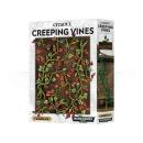 64-51 Citadel Creeping Vines